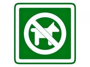 Piktogram Zákas vstupu psům zelený