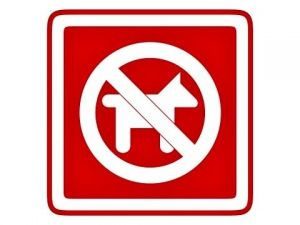 Piktogram Zákas vstupu psům červený