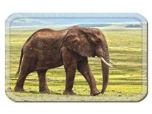 Nášivka se slonem